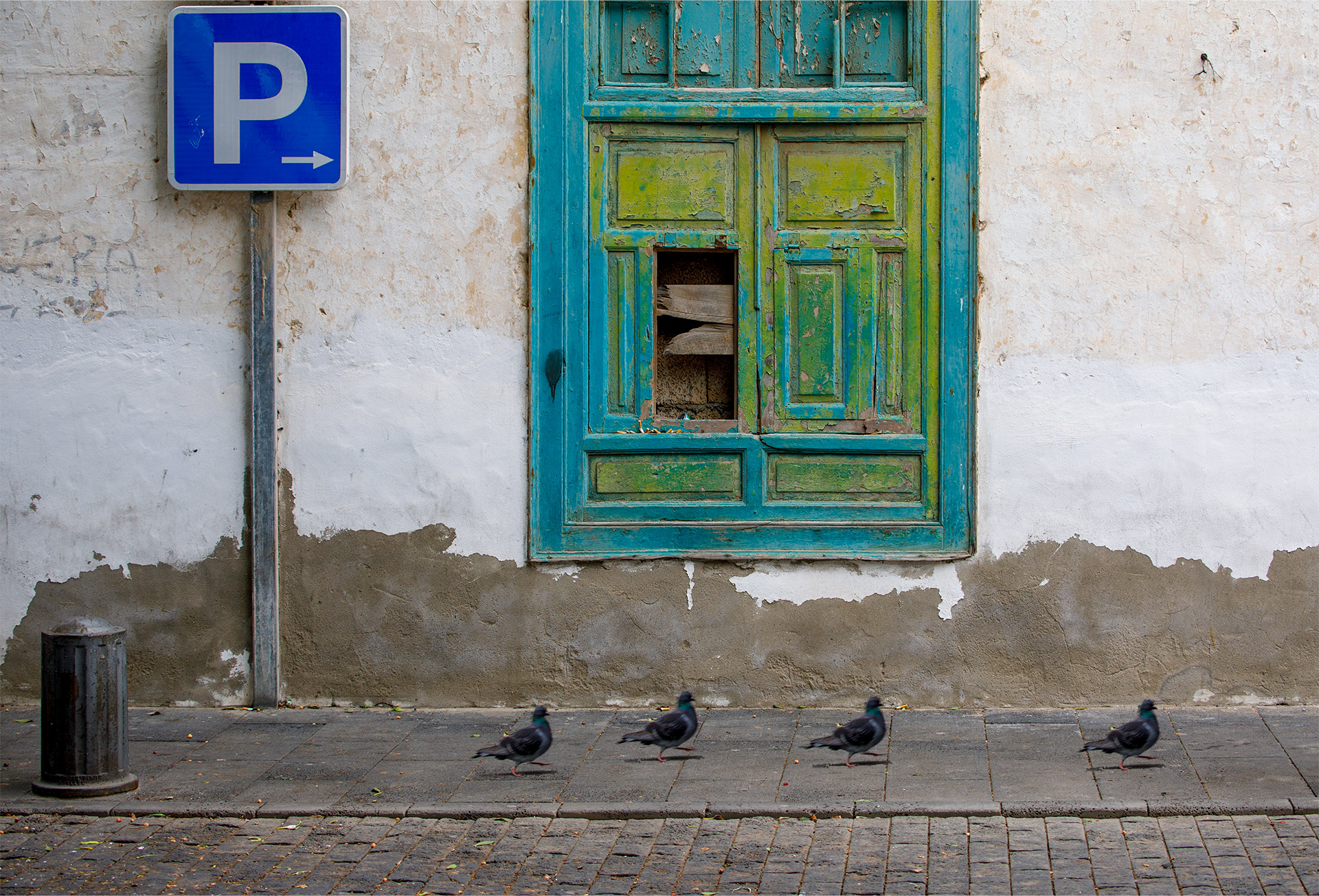 Pigeons in the centre of Arrecife